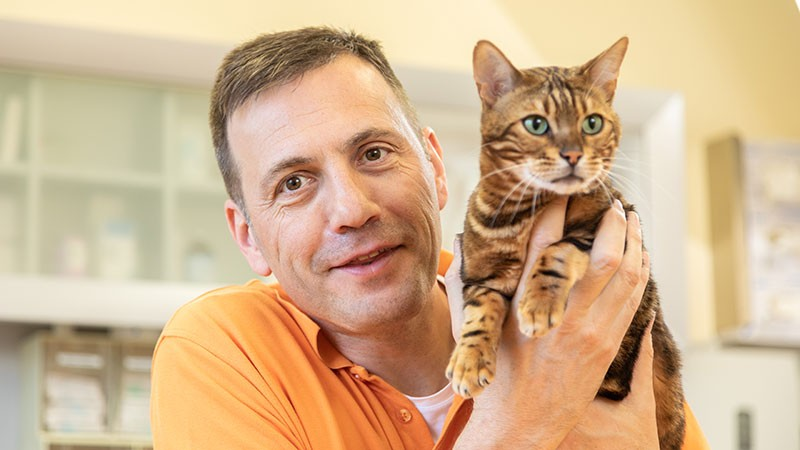 Tierarztpraxis, Team